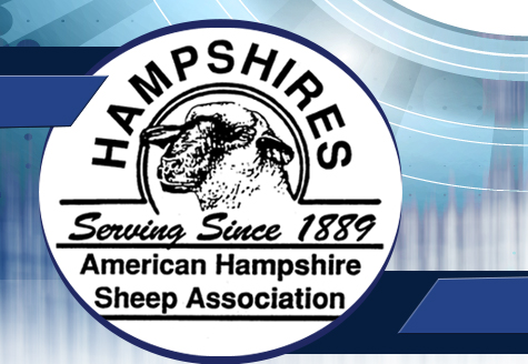 American Hampshire Sheep Association :: Breeders